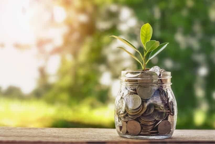 Jar of coins with tree sprout to help start an emergency fund