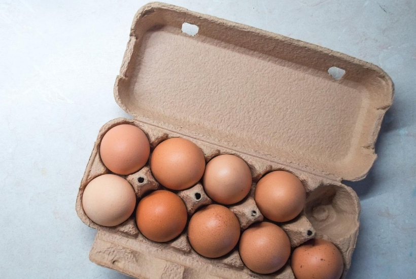 9 brown eggs in carton with 1 spot open to consider the risks in a monthly dividend strategy